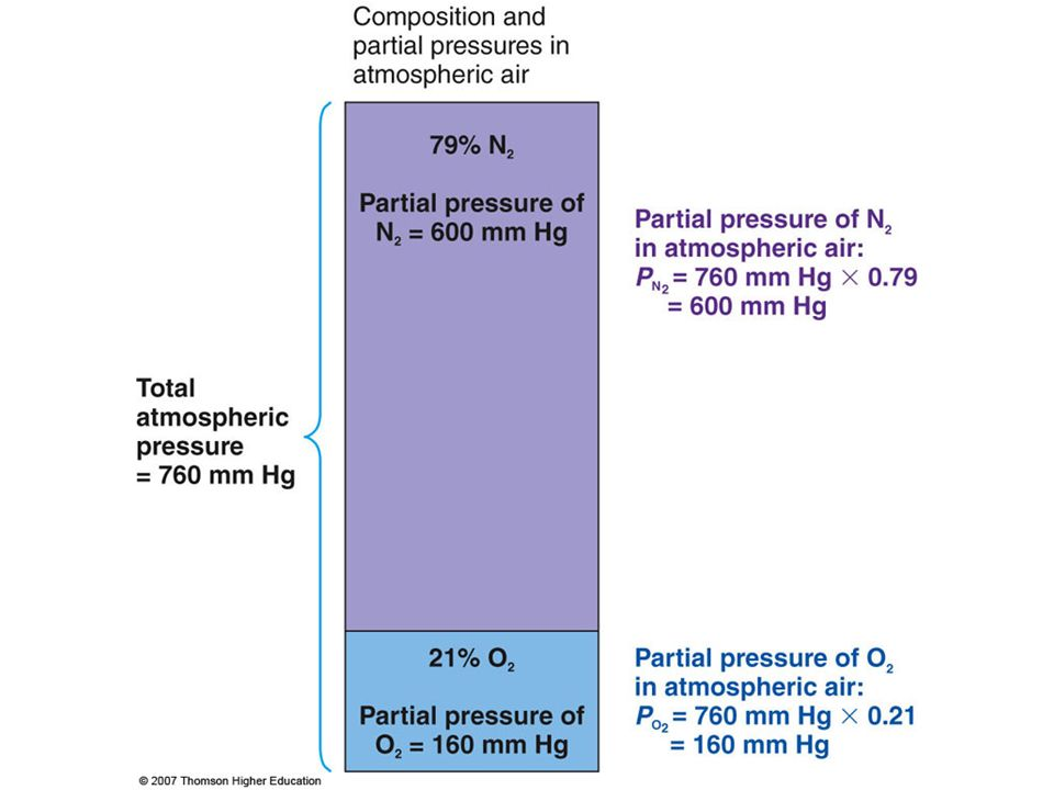 Figure 13.24: Concept of partial pressures.
