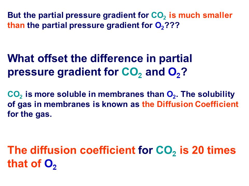 The diffusion coefficient for CO2 is 20 times that of O2