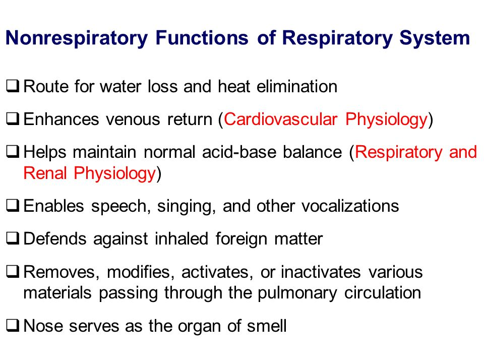Nonrespiratory Functions of Respiratory System