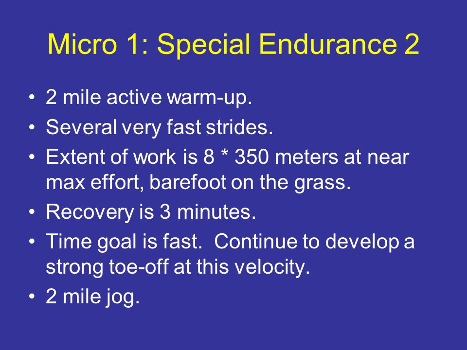 Micro 1: Special Endurance 2
