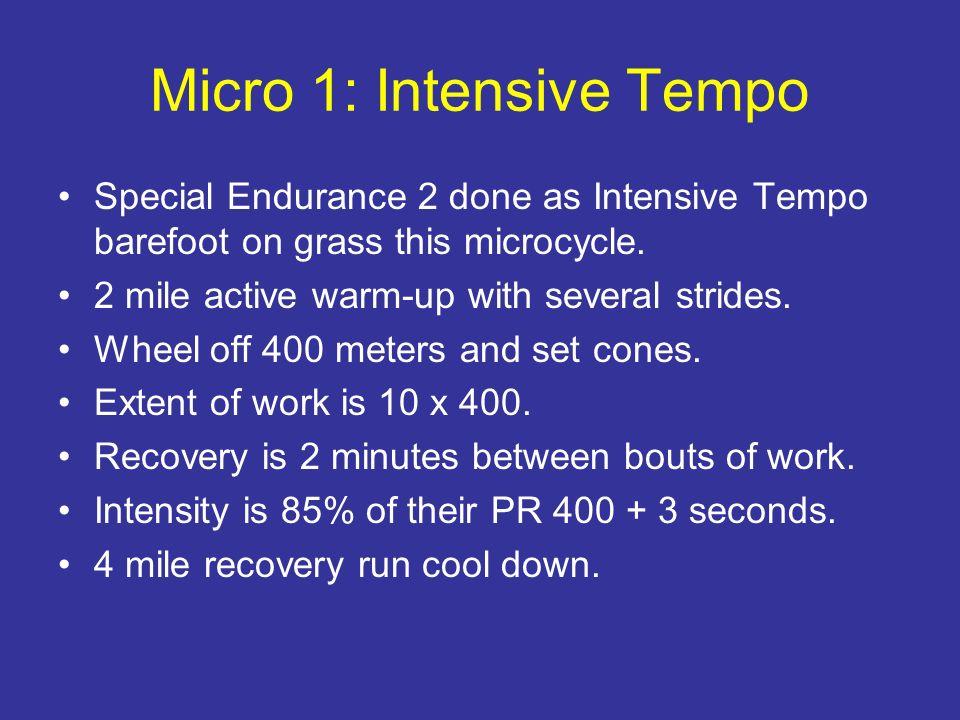 Micro 1: Intensive Tempo