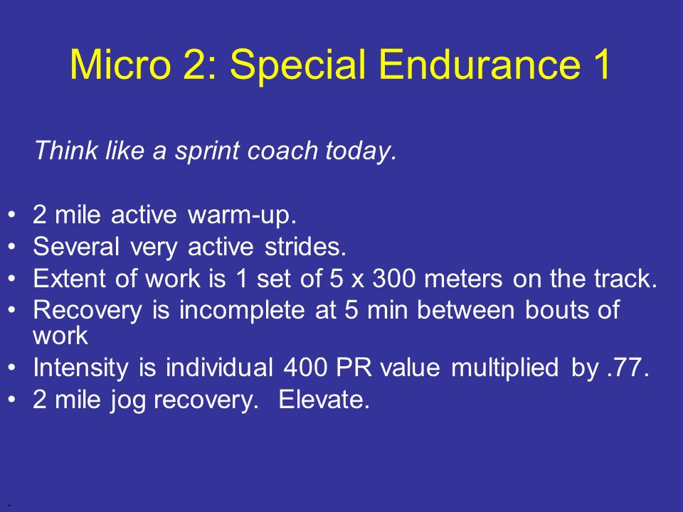 Micro 2: Special Endurance 1