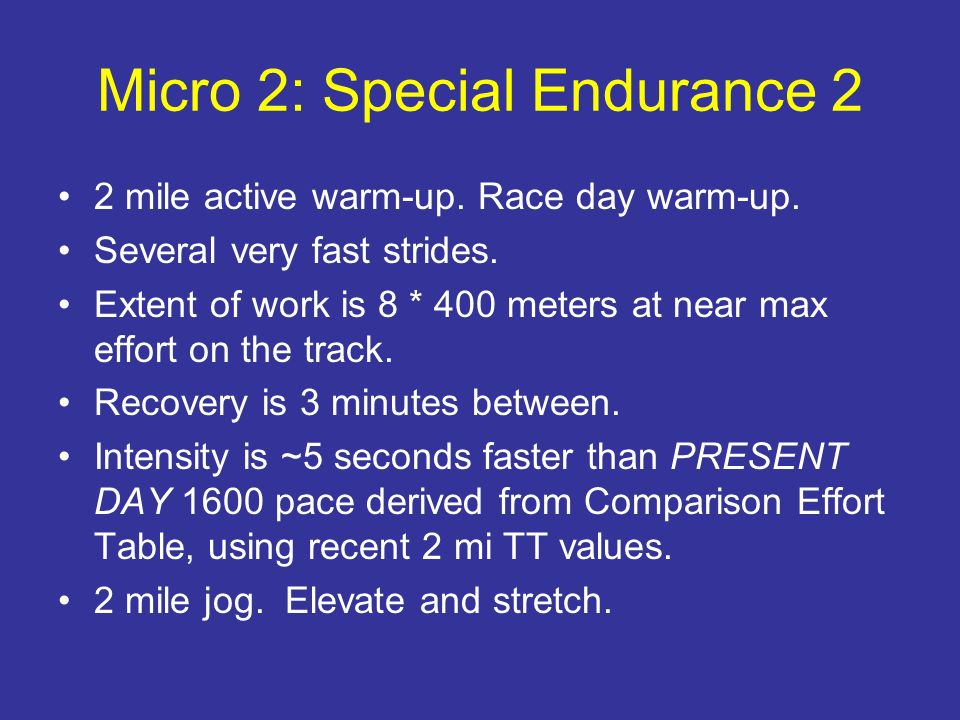 Micro 2: Special Endurance 2