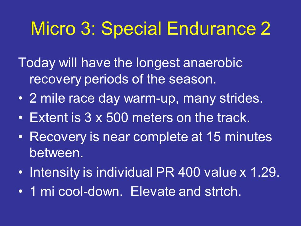 Micro 3: Special Endurance 2
