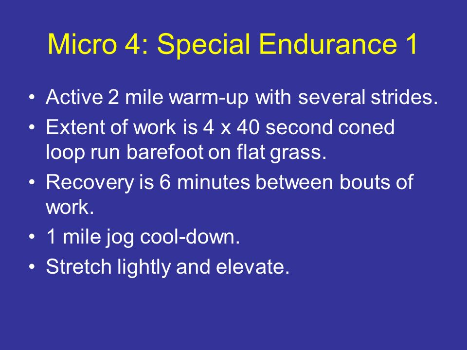 Micro 4: Special Endurance 1