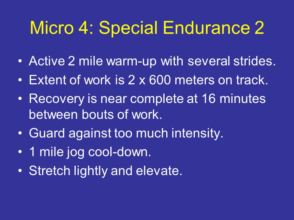 Micro 4: Special Endurance 2