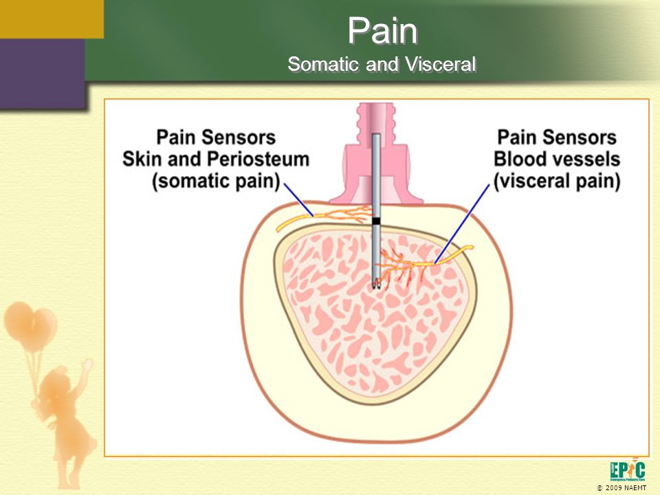 Pain Somatic and Visceral