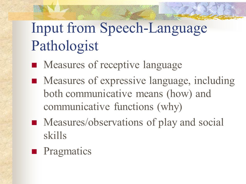 Input from Speech-Language Pathologist