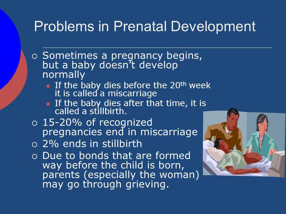 Problems in Prenatal Development