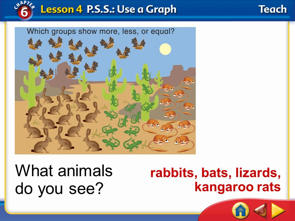 What animals do you see rabbits, bats, lizards, kangaroo rats