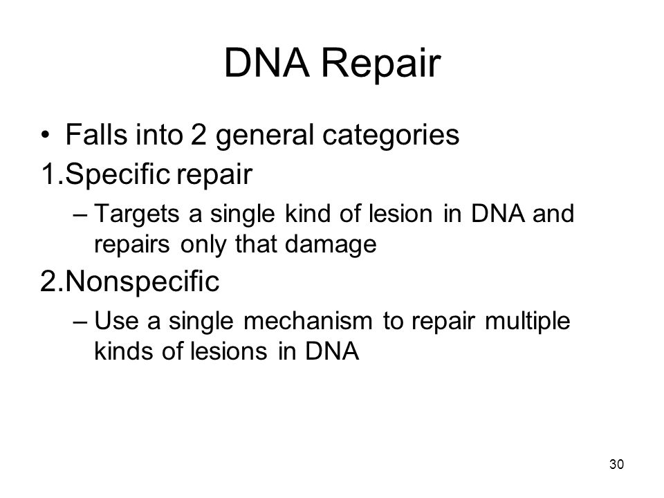 DNA Repair Falls into 2 general categories Specific repair Nonspecific