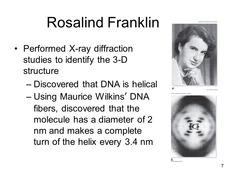 Rosalind FranklinPerformed X-ray diffraction studies to identify the 3-D structure. Discovered that DNA is helical.
