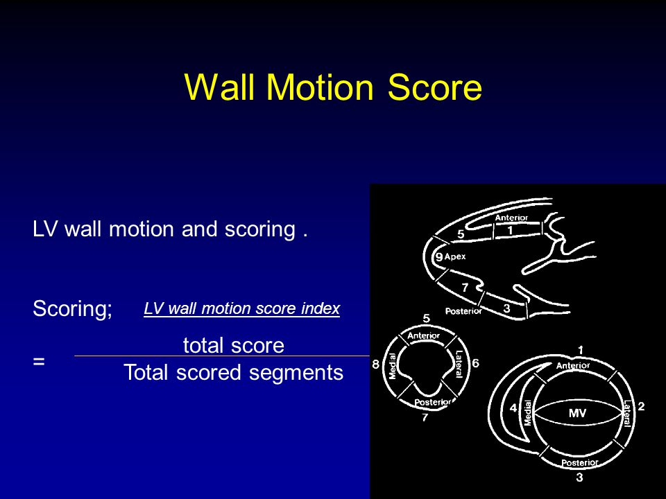 Wall Motion Score LV wall motion and scoring . Scoring; = total score