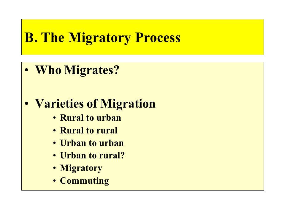 B. The Migratory Process