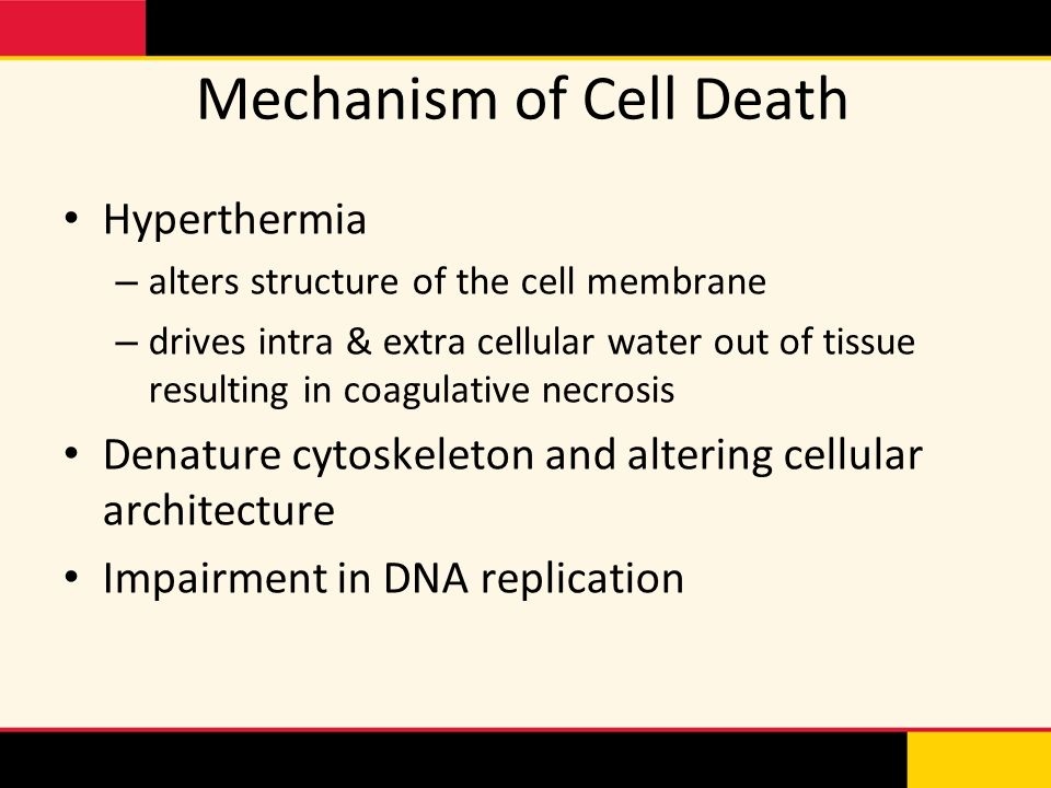 Mechanism of Cell Death