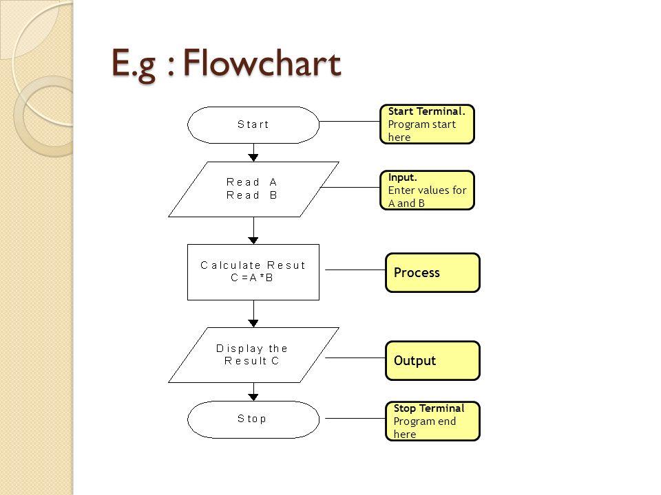 E.g : Flowchart Process Output Start Terminal. Program start here