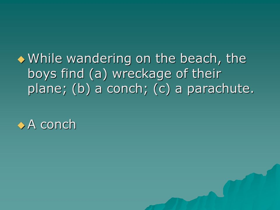 While wandering on the beach, the boys find (a) wreckage of their plane; (b) a conch; (c) a parachute.