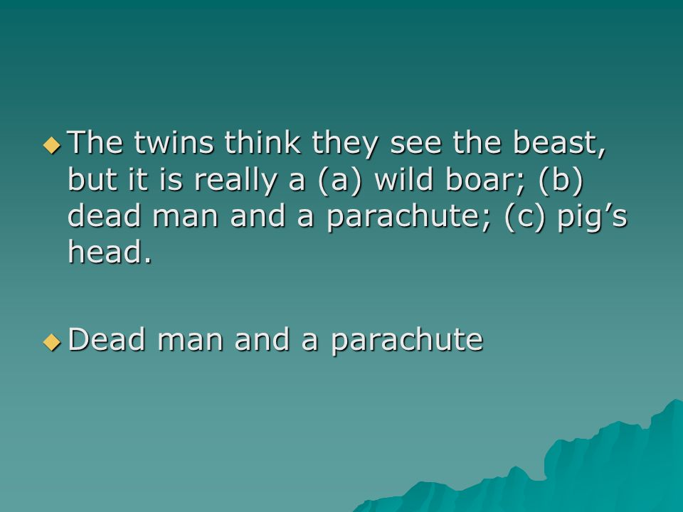 The twins think they see the beast, but it is really a (a) wild boar; (b) dead man and a parachute; (c) pig's head.