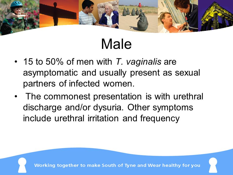 Male 15 to 50% of men with T. vaginalis are asymptomatic and usually present as sexual partners of infected women.