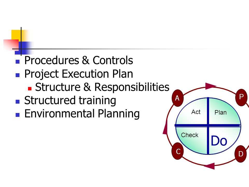 Do Procedures & Controls Project Execution Plan