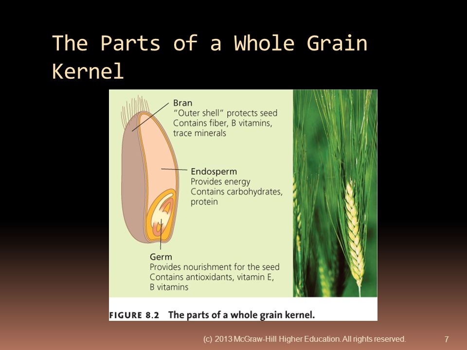 The Parts of a Whole Grain Kernel