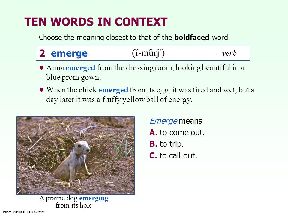 TEN WORDS IN CONTEXT 2 emerge – verb