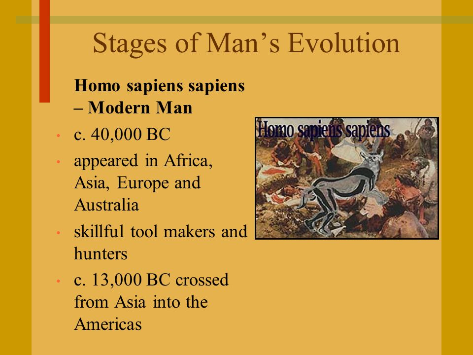 Stages of Man's Evolution