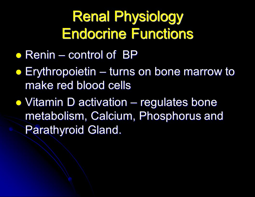 Renal Physiology Endocrine Functions