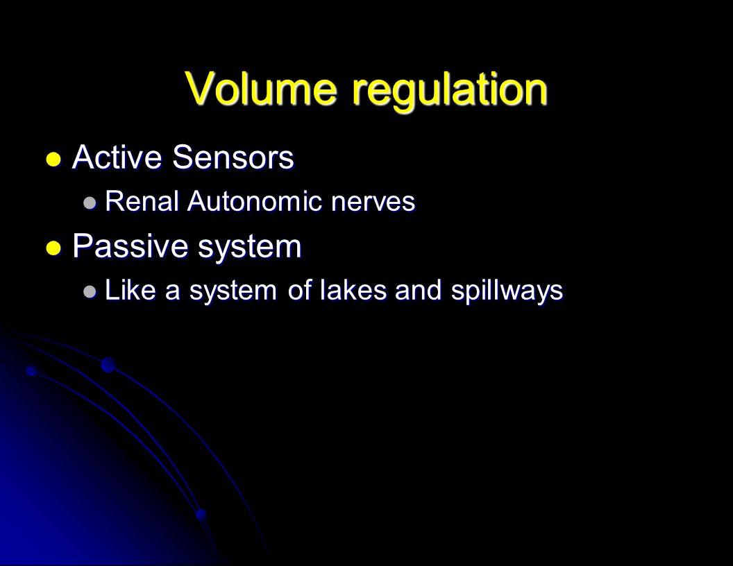 Volume regulation Active Sensors Passive system Renal Autonomic nerves