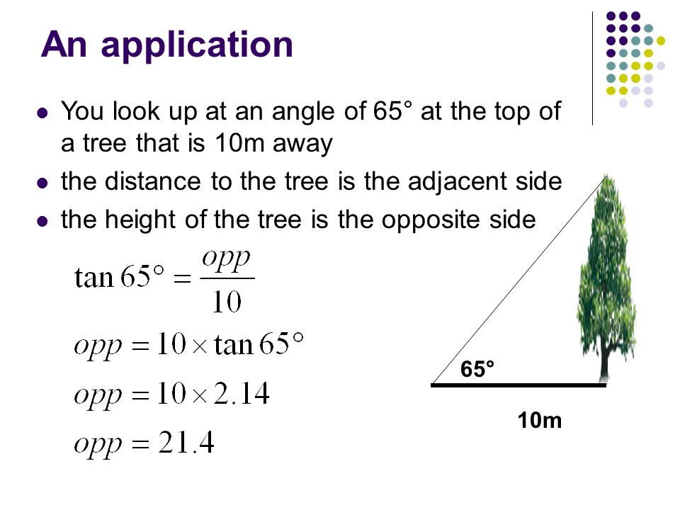 An application You look up at an angle of 65° at the top of a tree that is 10m away. the distance to the tree is the adjacent side.