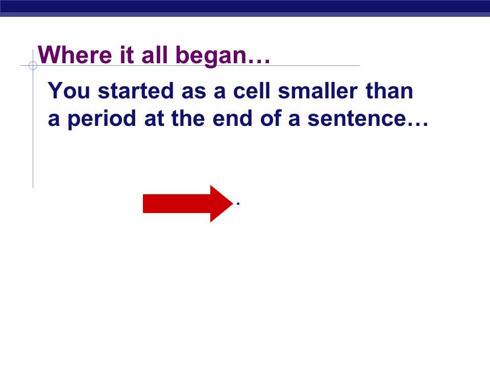 Where it all began… You started as a cell smaller than a period at the end of a sentence…