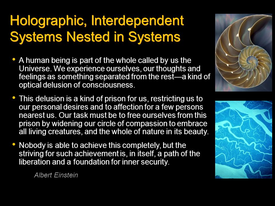 Holographic, Interdependent Systems Nested in Systems
