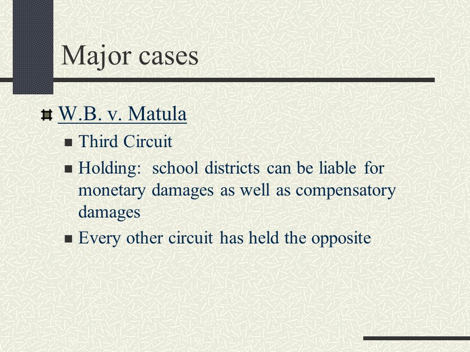 Major cases W.B. v. Matula Third Circuit