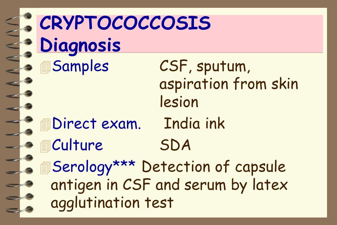 CRYPTOCOCCOSIS Diagnosis