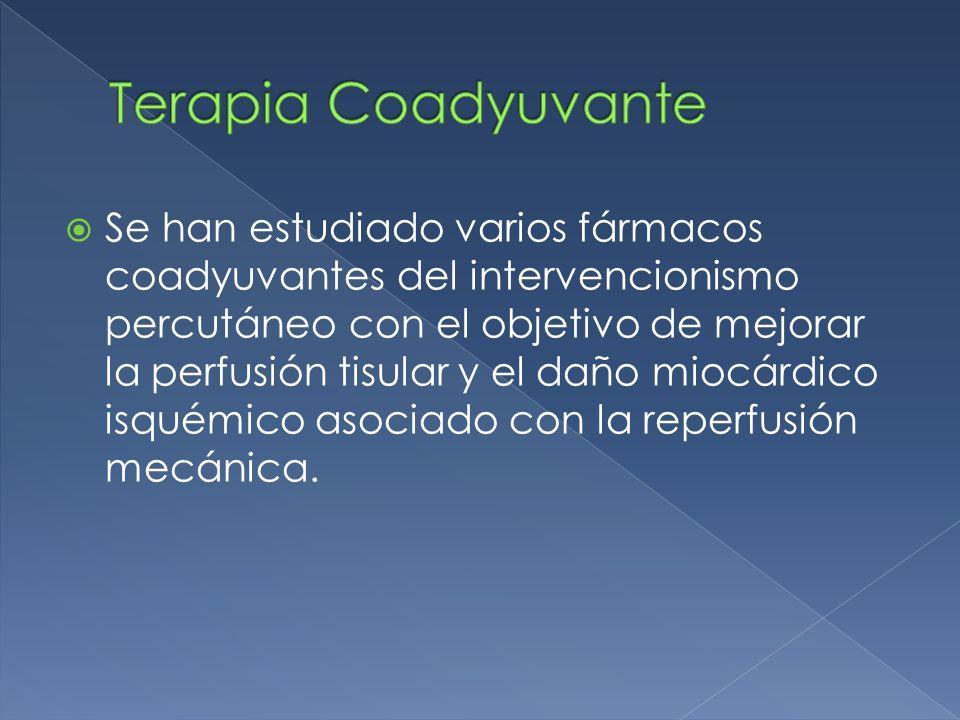 Terapia Coadyuvante