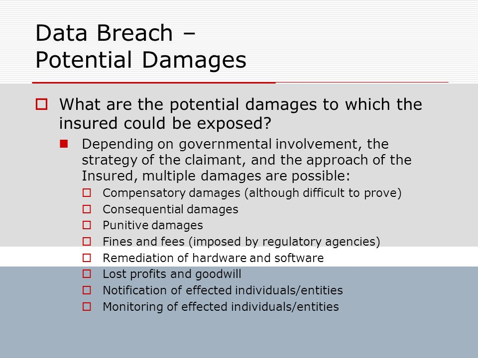 Data Breach – Potential Damages