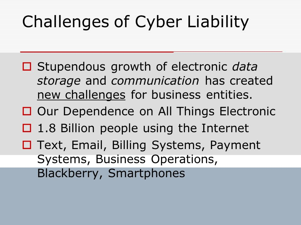 Challenges of Cyber Liability