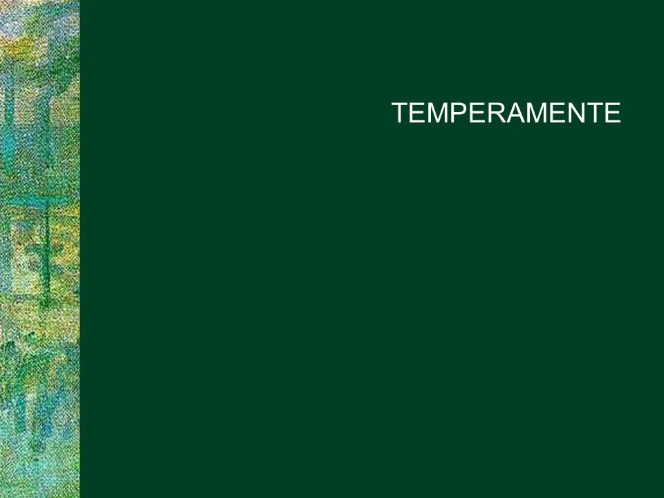 TEMPERAMENTE PROJECT CONSULT Unternehmensberatung SAPERIONcongress