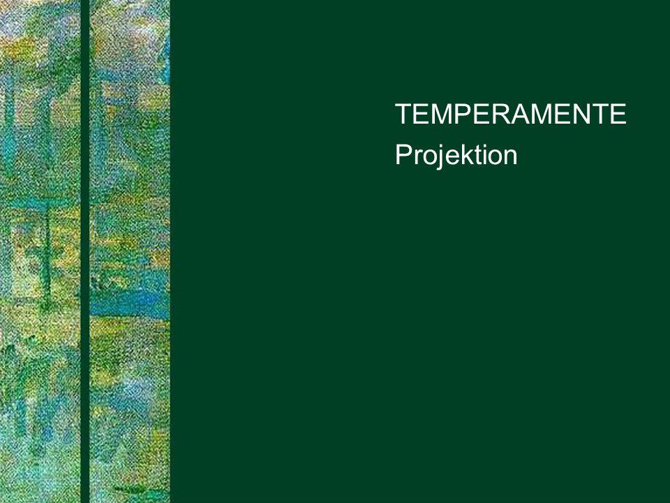 TEMPERAMENTE Projektion PROJECT CONSULT Unternehmensberatung