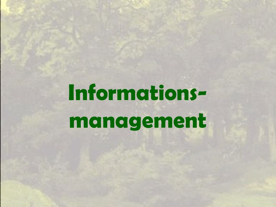 Informations-management