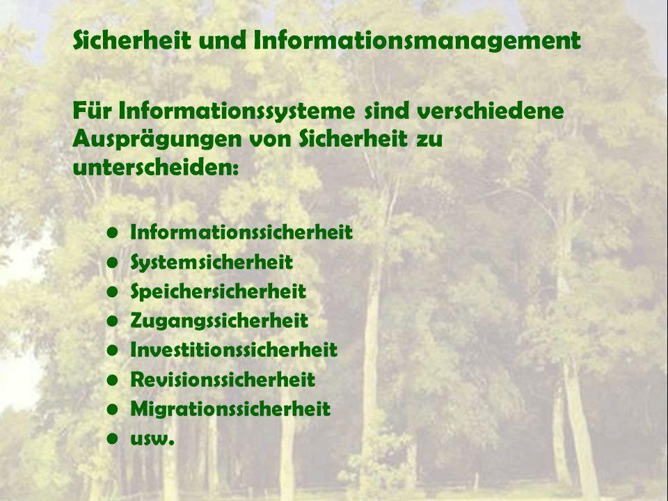 Sicherheit und Informationsmanagement