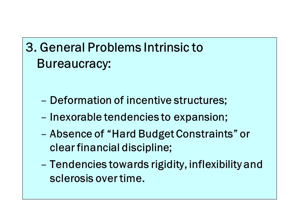 3. General Problems Intrinsic to Bureaucracy: