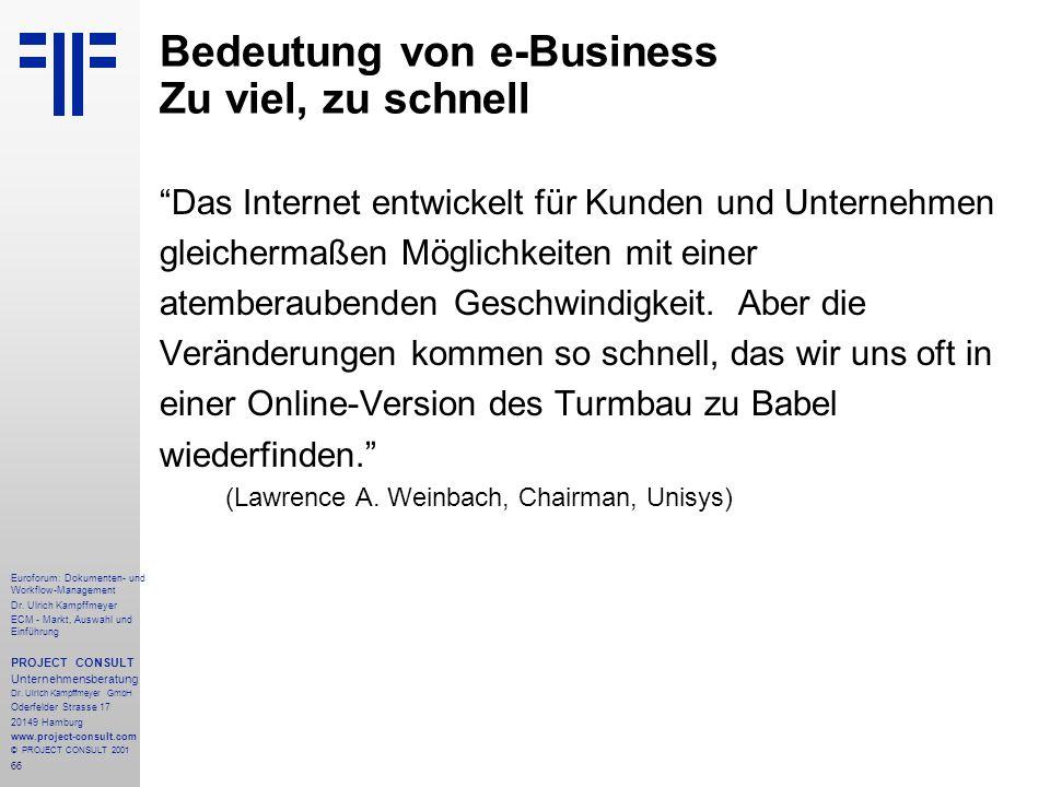 Bedeutung von e-Business Zu viel, zu schnell