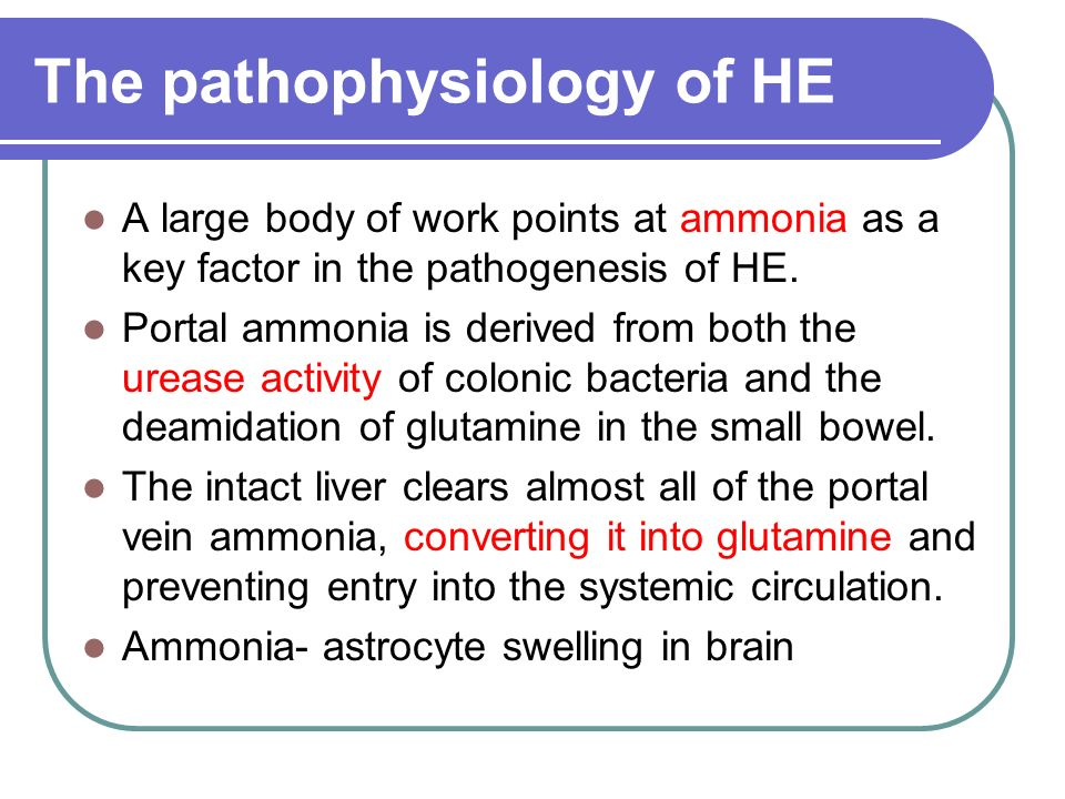 The pathophysiology of HE
