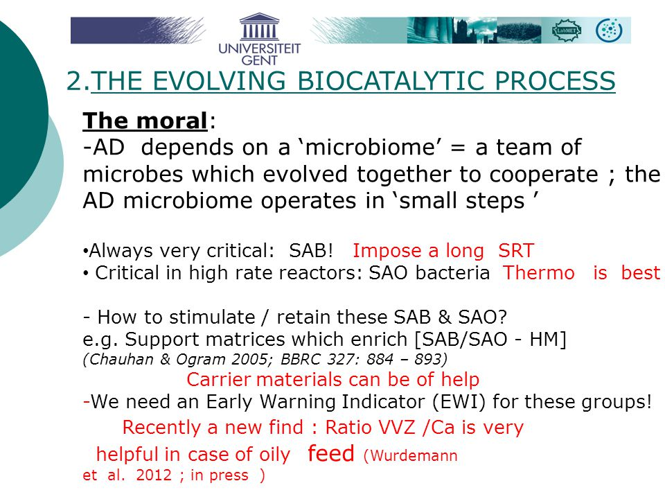 2.THE EVOLVING BIOCATALYTIC PROCESS