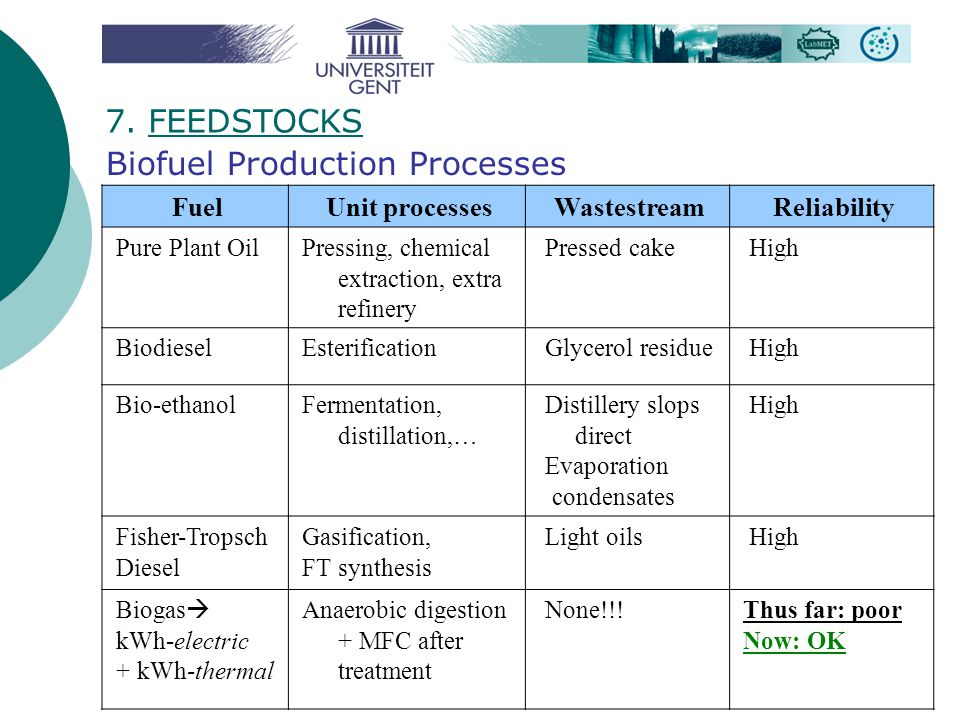 Biofuel Production Processes