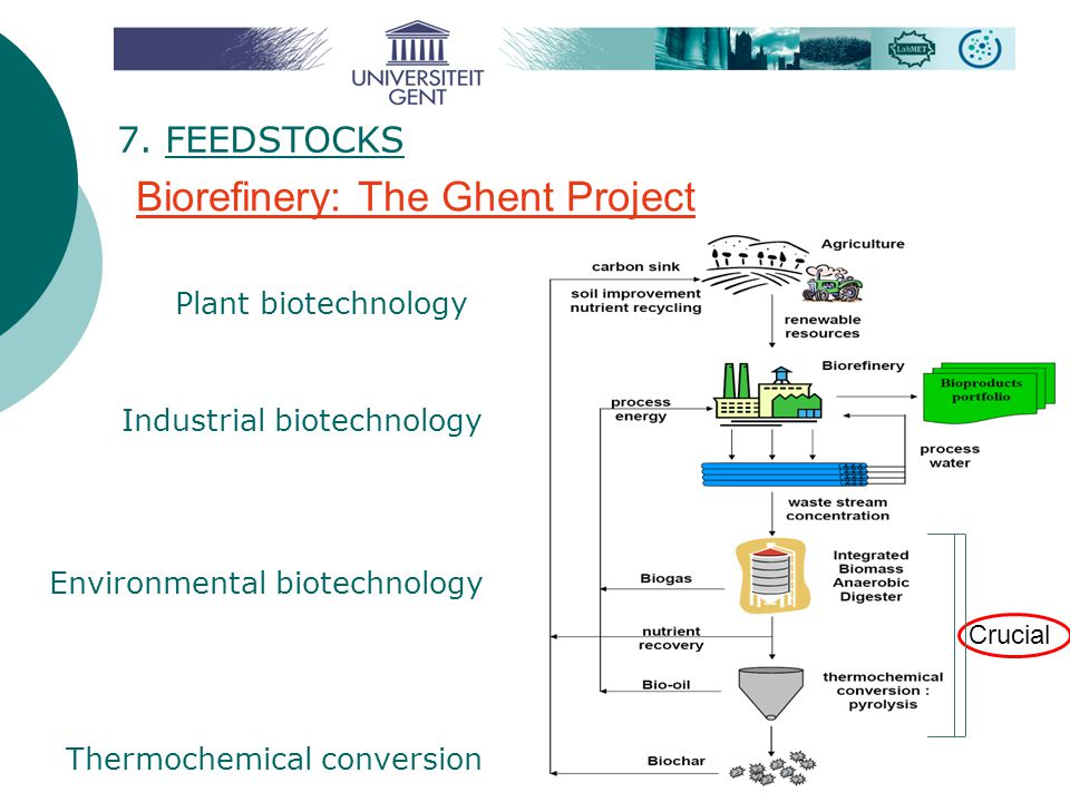 Biorefinery: The Ghent Project