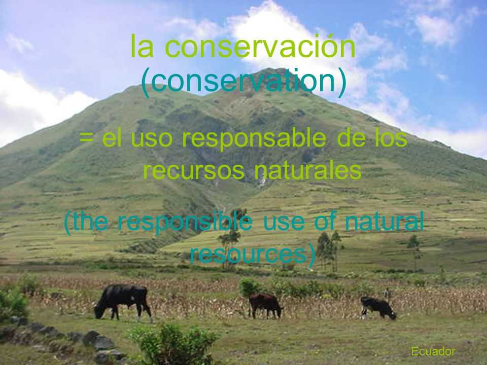 la conservación (conservation)