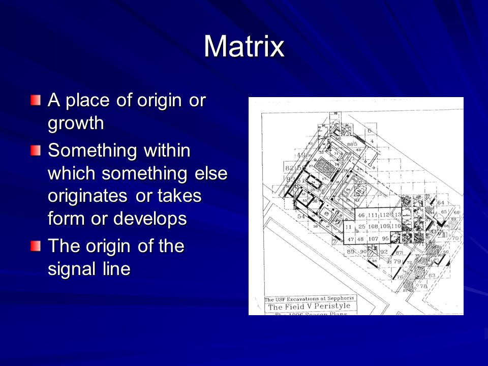 Matrix A place of origin or growth