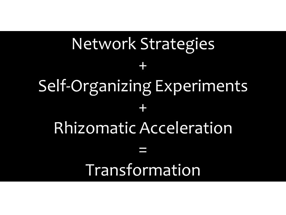Network Strategies + Self-Organizing Experiments + Rhizomatic Acceleration = Transformation